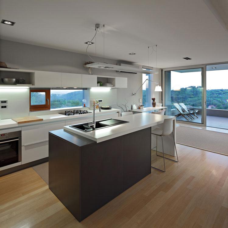 White Modern Mansion Kitchen
